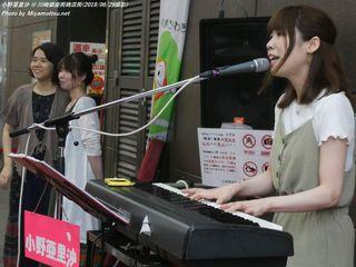 小野亜里沙(#493)