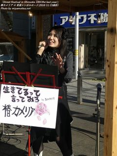 椿カメリア(#36)