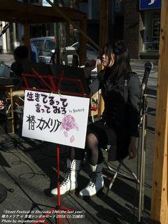 椿カメリア(#49)