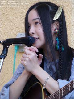 宏菜(#200)