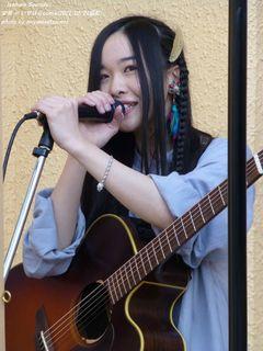 宏菜(#210)