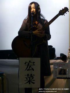 宏菜(#344)