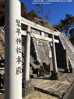 「平成31年初詣」(#4)