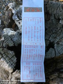 「令和3年初詣」(武州柿生琴平神社)