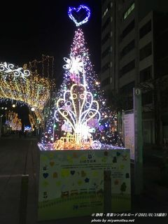 静岡イルミネーション