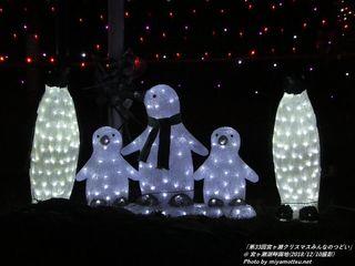 「第33回宮ヶ瀬クリスマスみんなのつどい」(#125)