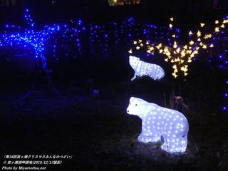 「第34回宮ヶ瀬クリスマスみんなのつどい」(#114)