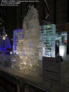SUSUKINO ICE WORLD(#6)