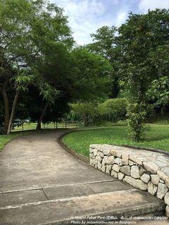 Mount Faber Park(#4)