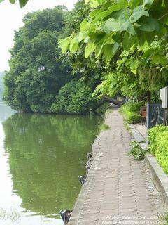 Hồ Hoàn Kiếm(ホアンキエム湖)(#283)